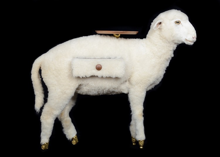 Taxidermy Sheep Cabinet